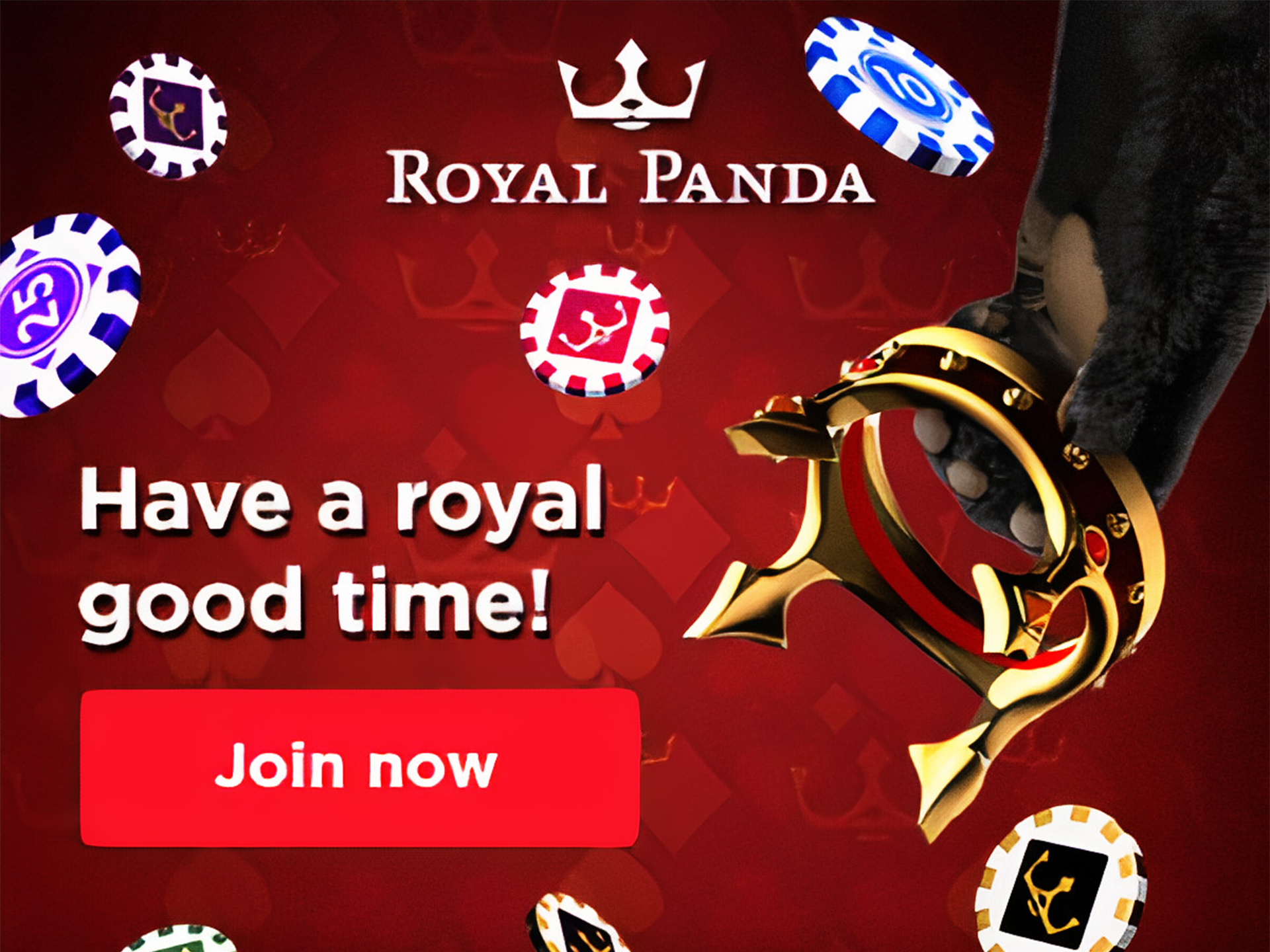 Cricket betting enthusiasts will be satisfied with Royal Panda.