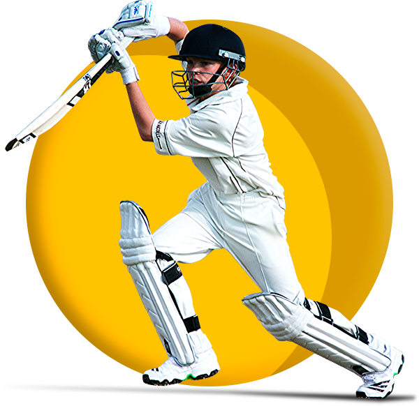 Choose the best site for online cricket betting in India, see the full list below
