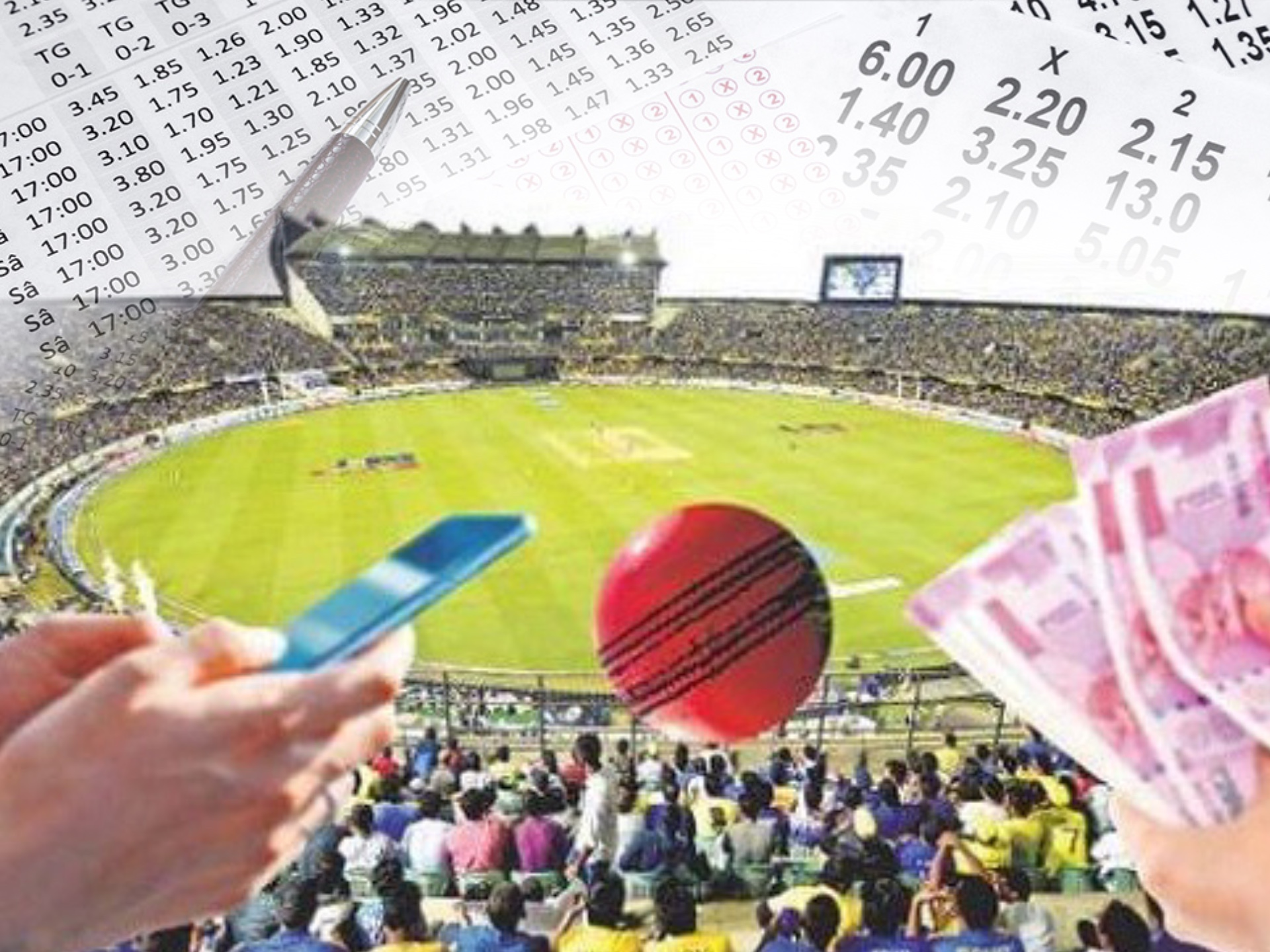 Bet on cricket only amount of money that you are ready to lose.